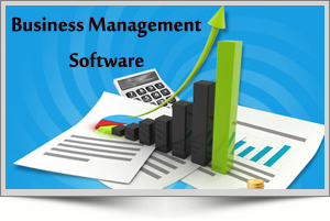 business software solutions, Business Management Software, Mini office ERP