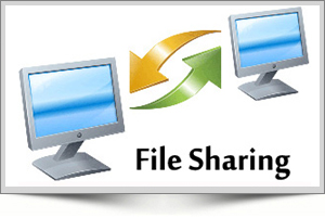 best file sharing software to share files in my office, best software to transfer files in our organization, files sharing in our company hyderabad file sharing software contact details