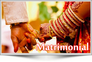 best Matrimonial software for free, free download Matrimonial website, Matrimonial software contact person or company name in hyderabad india